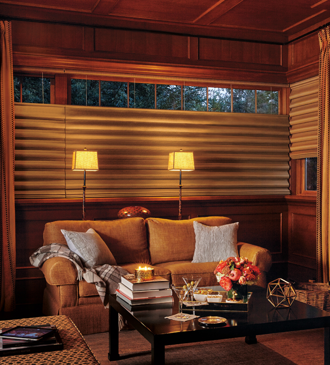 Hunter Douglas Vignette Blackout Rocky Mountain Shutters & Shades Denver