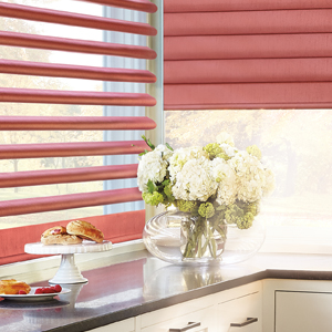 Motorized Blinds Rocky Mountain Shutters & Shades Denver