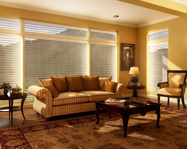 living room window shades Denver