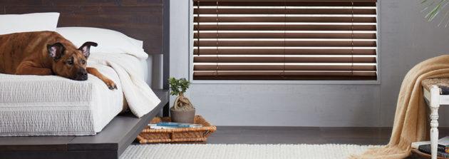 pet safe blinds Denver